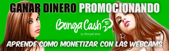 Ganar dinero con WebCams XXX